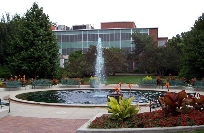 Michigan State University CRNA School